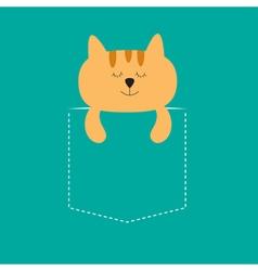 Cat sleeping in the pocket Cute cartoon character vector image vector image