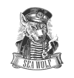 Sea wolf with pipe and ribbon vector image