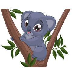 Funny little koala bear baby vector