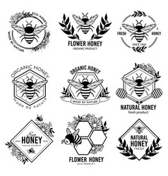 honey labels beekeeping eco product badges vector image