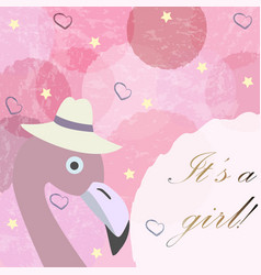 Its a girl baby girl birth announcement card vector