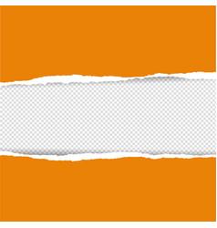 orange torn paper vector image