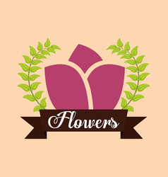 flowers leaves ribbon label ornament vector image