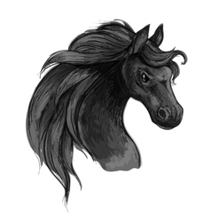Horse art portrait Mustang with raging eyes vector image vector image