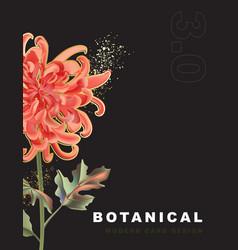 dark chrysanthemum tropical flowers and leaves vector image