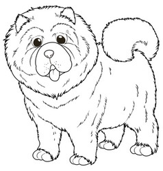 Doodle animal for chow chow dog vector