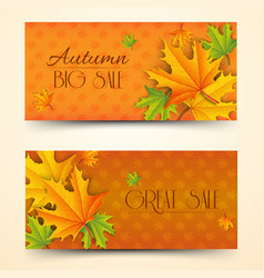 floral autumn sale horizontal banners vector image
