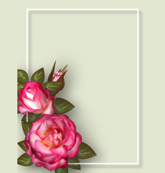 floral card design for greeting or invitation vector image