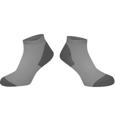 Grey short socks vector