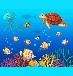 Many types of sea animals under the ocean vector