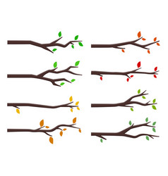 Set tree branches in flat design style vector