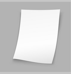 sheet paper gray background vector image vector image