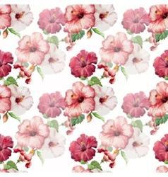 Hibiscus3 vector