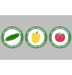 Vegetables Labels Set vector image