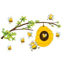 Beehive vector image vector image