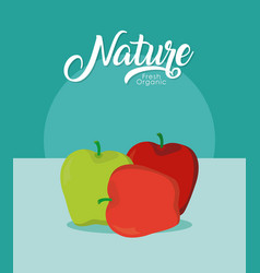 Apples nature fruit vector