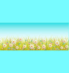 Easter background with flowers grass vector