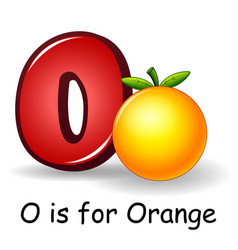 Fruit alphabet o is for orange vector
