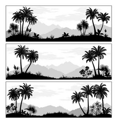Landscapes with palms vector