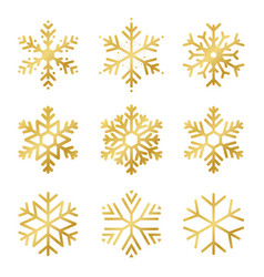 Set golden snowflakes for christmas decoration vector