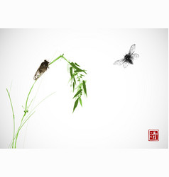 two cicadas and green bamboo branch traditional vector image