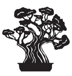 Bonsai tree silhouette vector image