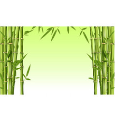 bamboo frame with blank space - green bamboo vector image