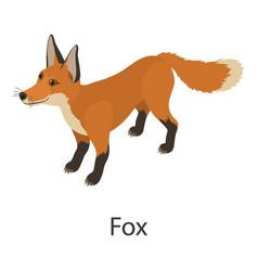 fox icon isometric style vector image