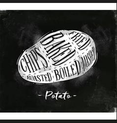 Potato cutting scheme chalk vector