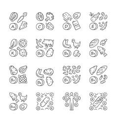 Vitamins linear icons set a c d e k b natural vector