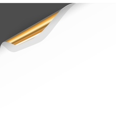 Banner with Curled White Paper Corner vector image