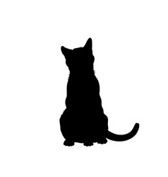 black silhouette of cat isolated image vector image