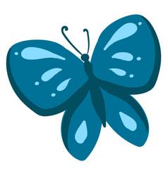 blue butterfly on white background vector image