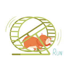 Cute hamster running in wheel demonstrating vector