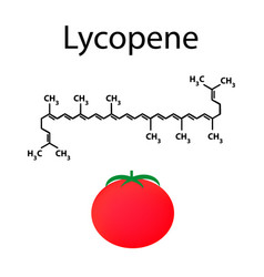 Lycopene is a chemical molecular formula tomato vector