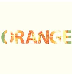 Orange sign vector