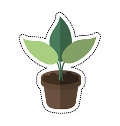 cartoon pot plant garden concept vector image