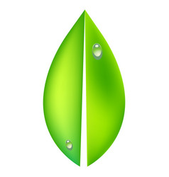 ecology concept icon with vector image