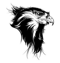 Falcon head vector
