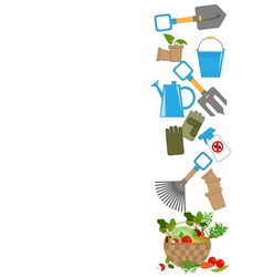 Garden tools and fresh vegetables vector