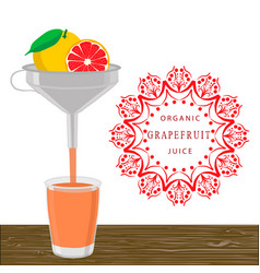 The theme grapefruit vector