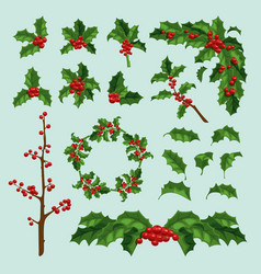merry christmas mistletoe berry leaf and vector image