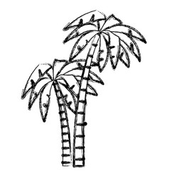 tree palms isolated vector image