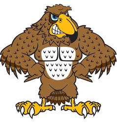 Falcon logo mascot vector