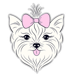Head of hand drawn yorkshire terrier vector