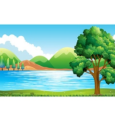 Lake and park vector image
