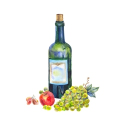 Still life with a bottle of wine grapes and apple vector image