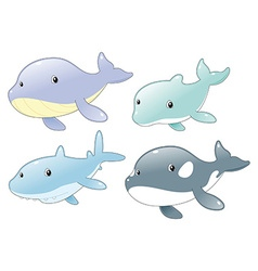 Dolphin Shark Whale and Killer Whale vector image vector image