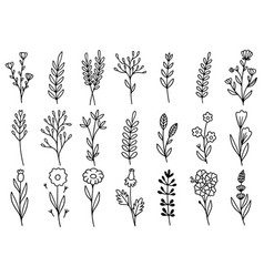 0167 hand drawn flowers doodle vector