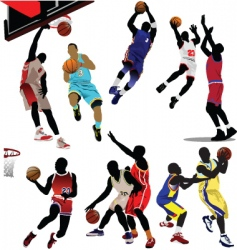 basketball players vector image